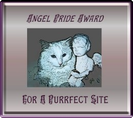 angel pride award